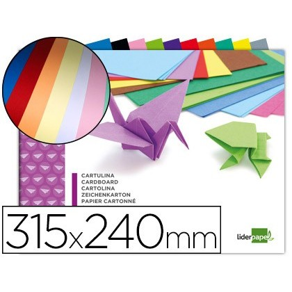 BLOC TREBALLS MANUALS LIDERPAPEL CARTOLINA 240X315MM 10 FULLS COLORS ASSORTITS